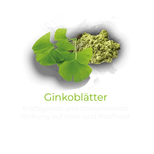 Ginkoblaetter-1.png