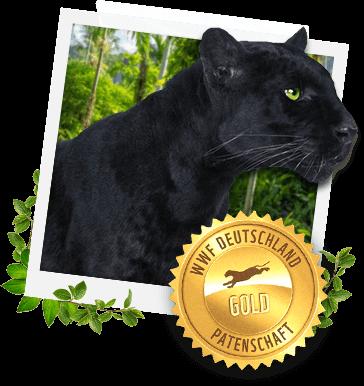 WWF Jaguar Gold
